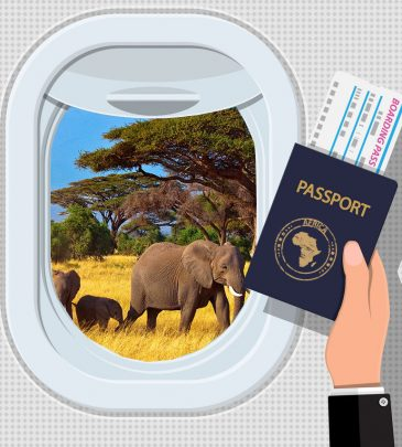 Passport 7- Africa (Case study counties: Kenya, Nigeria, S. Africa)